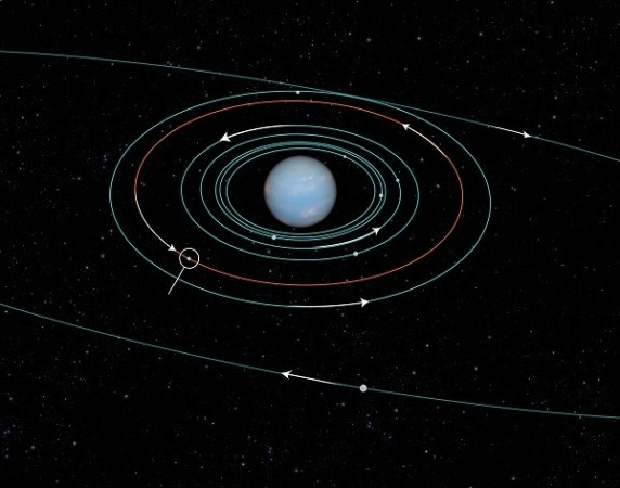 This undated NASA handout diagram shows the orbits of several moons located close to the planet Neptune