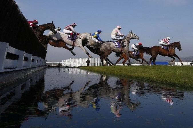 Cheltenham Festival horseracing