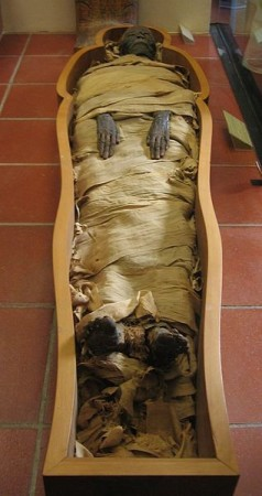 Ancient Egyptian Mummy Discovered With Brain but No Heart [Representational Image] (Wiki Commons/Joshua Sherurcij)