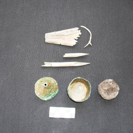 The working tools of a scriber whose tomb was discovered at the ancient Egyptian city of Oxyrhynchus (Photo Credit: University of  Barcelona)