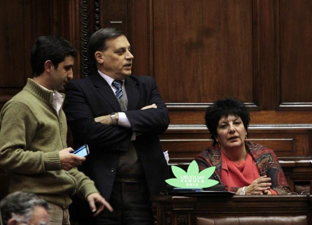 Marijuana Legislature