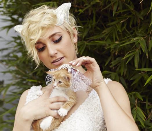 Cat Wedding Photos