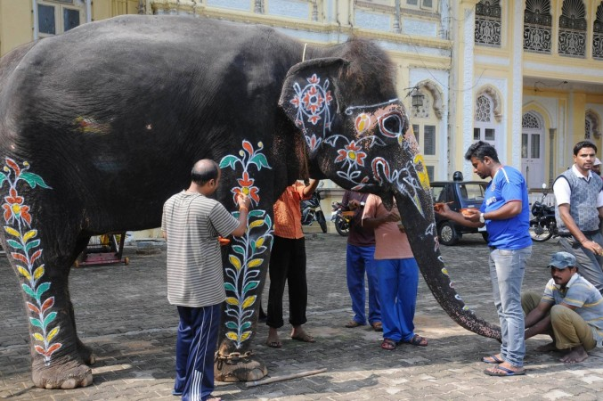Mysore Dasara festivities
