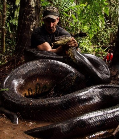 Discovery Channel 's Eaten Alive will see Paul Rosolie getting eaten by an Anaconda