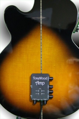 ToneWoodAmp for Accoustic Guitars