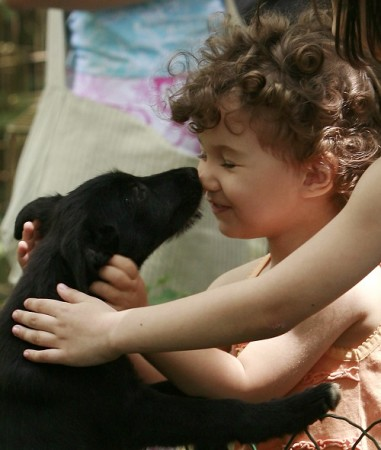 pet, dog and kid