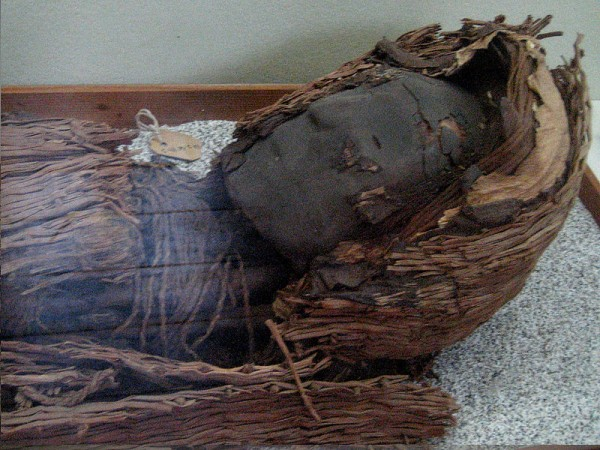 Ancient Chinchorro mummies that have been preserved for over 7,000 years are gradually turning into black ooze.