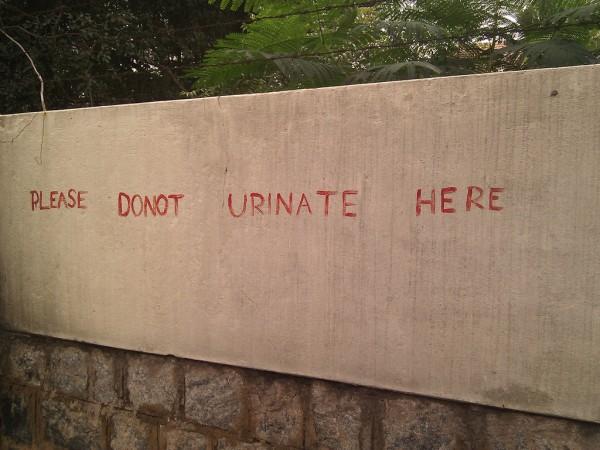 urinating in public punishable