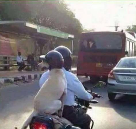 Helmet mandatory tamil nadu