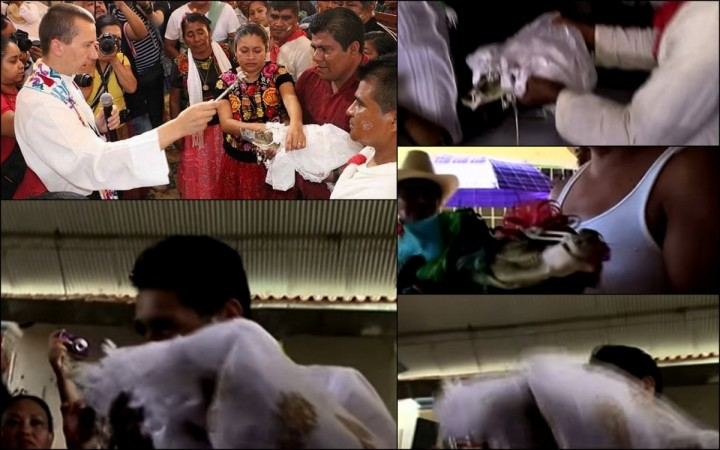 A Mayor in a Mexican fishing town has married a crocodile in a traditional ceremony for a second time.