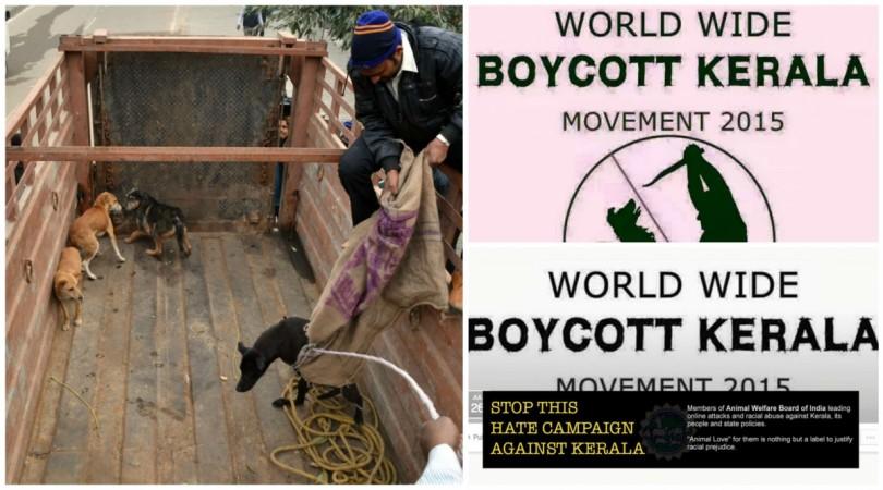 'Boycott Kerala' Campaigns on Social Media after Stray Dog Menace in Kerala