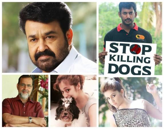 Stray Dog Menace in Kerala: Celebrities React