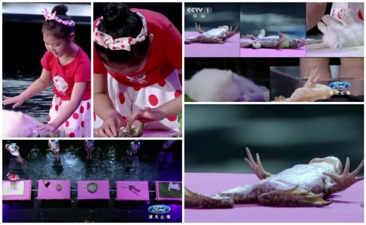 Chinese Girl Hypnotises Animals