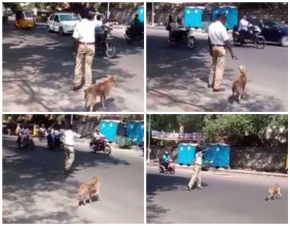 Traffic Cop Helps a Dog in Crossing the road