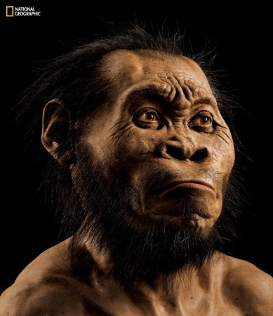 Homo naledi: New Star Man human ancestor discovered in South Africa cave