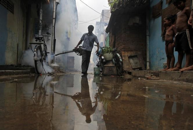 Delhi dengue