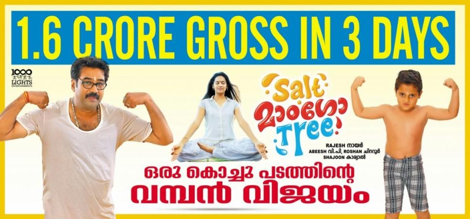 Salt Mango Tree box office