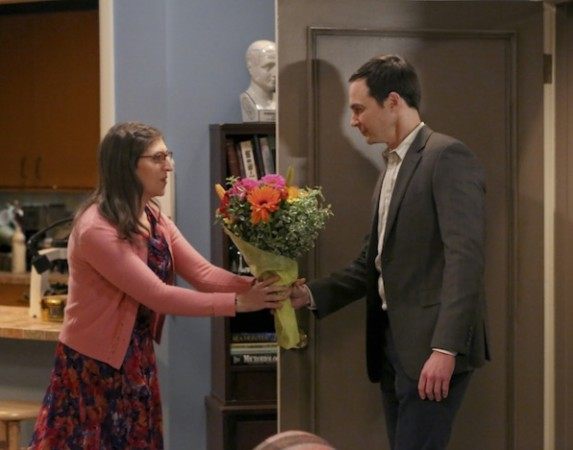 Big Bang Theory S9 e 11
