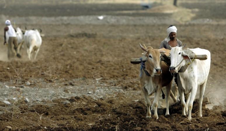 farmers maharashtra