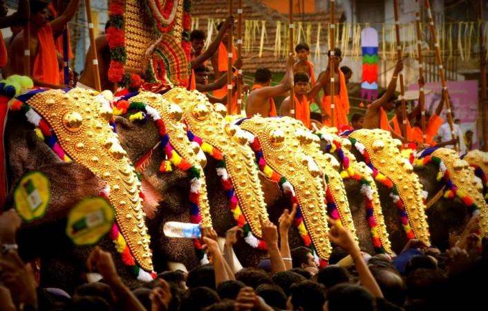 Caparisoned elephants during the Thrissur Festival