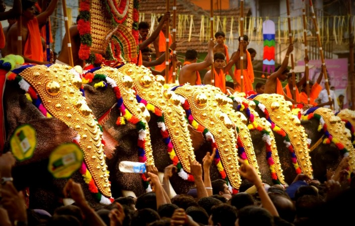 Caparisoned elephants during the Thrissur Festival
