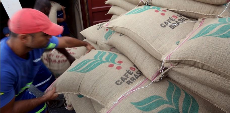 brazil coffee exports india arabica robusta