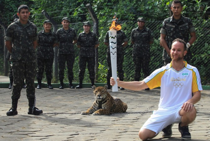 Juma the jaguar