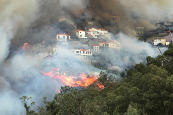 Portugese wildfire