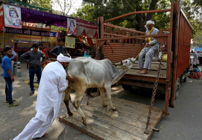 Union Environment Ministry bans sale of cattle for slaughter