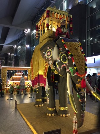 Elephant processsion