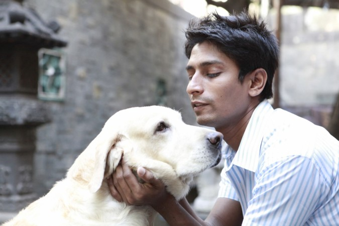 Sachin Bangera with his pet labrador