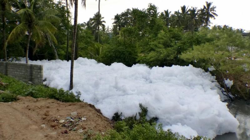 bellandur lake, lakes in bangalore
