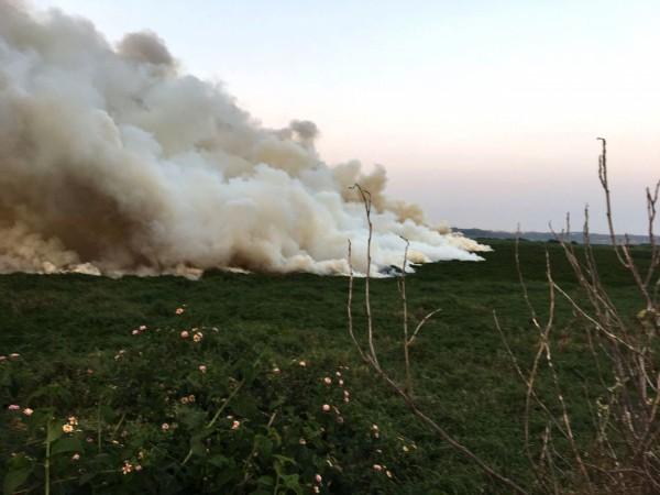 Bellandur Lake catch fire in Bengaluru
