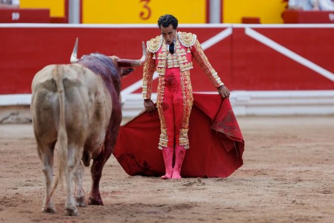 Ivan Fandino Bull Fight