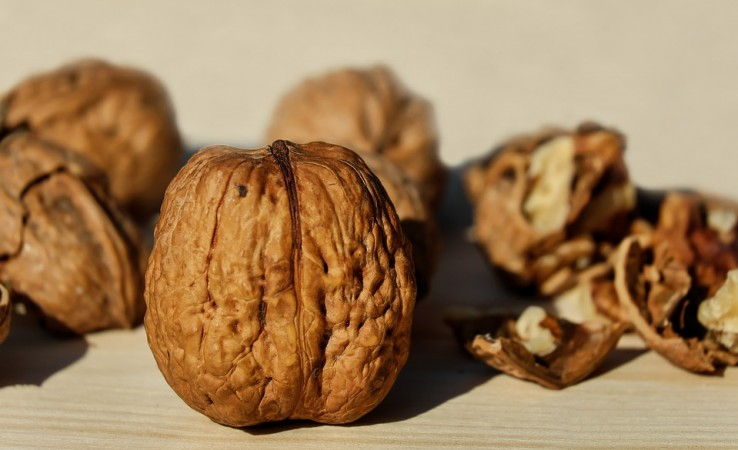 Walnuts Could Curb Cravings on a Neurological Level