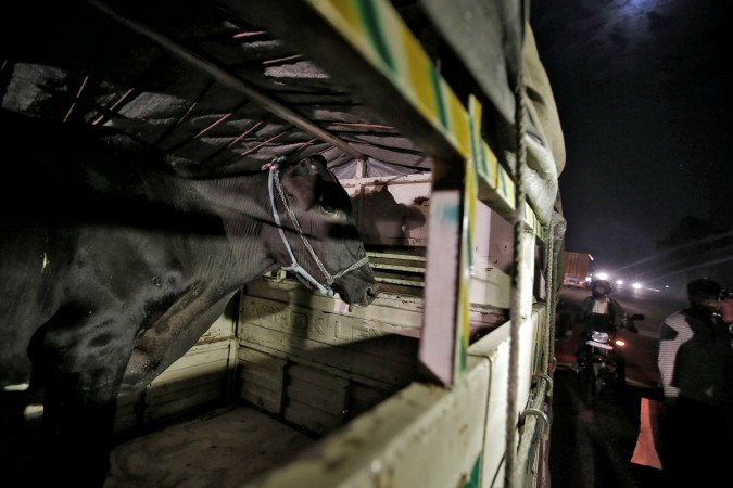 Will kill cow smugglers, says BJP's Gyan Dev Ahuja