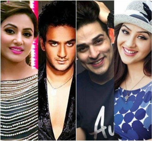 Bigg Boss 11 : Hina comments on Vikas, Priyank fight with her