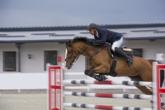 super-horses