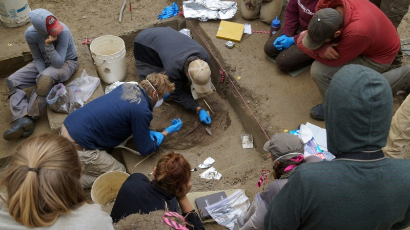 Interior Alaska Dig Reveals Previously Unknown
