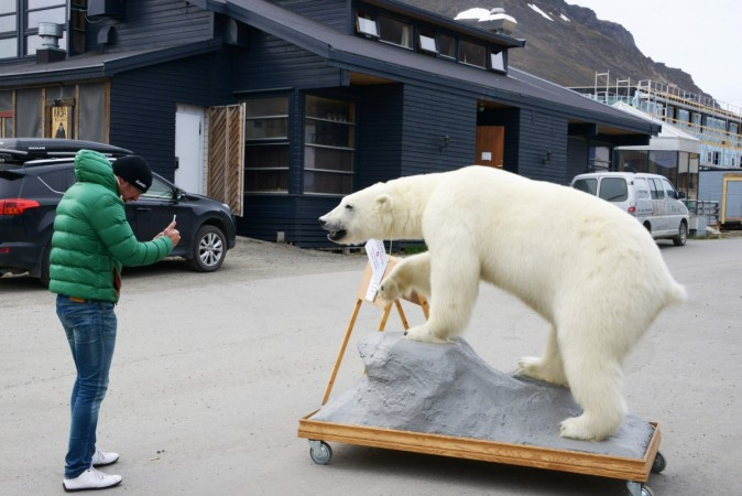 A tourist takes a picture of a stuffed polar bear on July 24, 2015 in the center of Longyearbyen.
