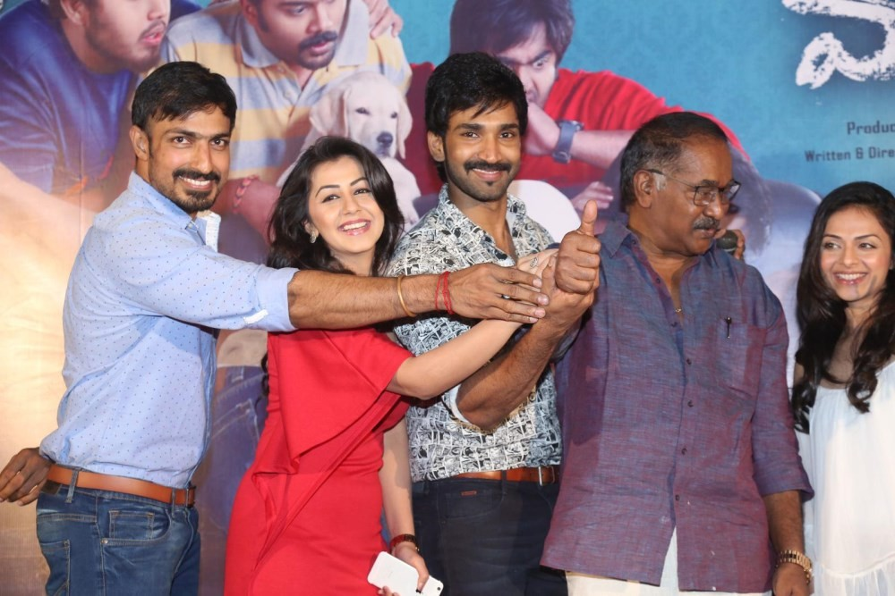 Aadhi,Nikki Galrani,Richa Pallod,Malupu Success Meet,Malupu Success Meet pics,Malupu Success Meet images,Malupu Success Meet stills,Malupu Success Meet photos,Malupu Success Meet pictures,Malupu,Telugu movie Malupu