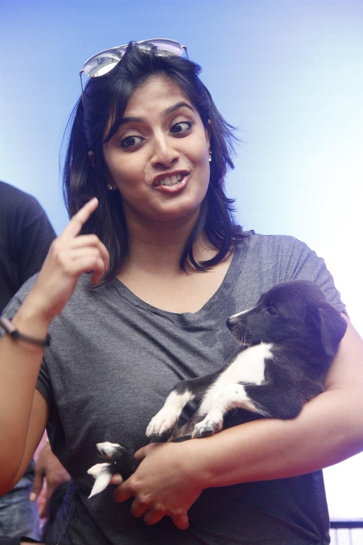 Varalaxmi Sarathkumar,Actress Varalaxmi Sarathkumar,Varalaxmi Sarathkumar latest pics,Varalaxmi Sarathkumar latest images,Varalaxmi Sarathkumar latest photos,Varalaxmi Sarathkumar latest stills,Varalaxmi Sarathk