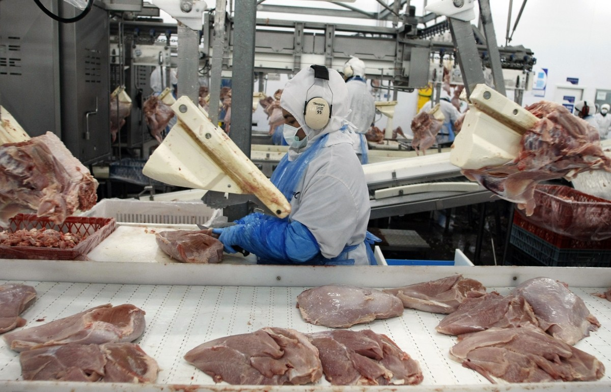 A worker processes turkeys at a food processing plant