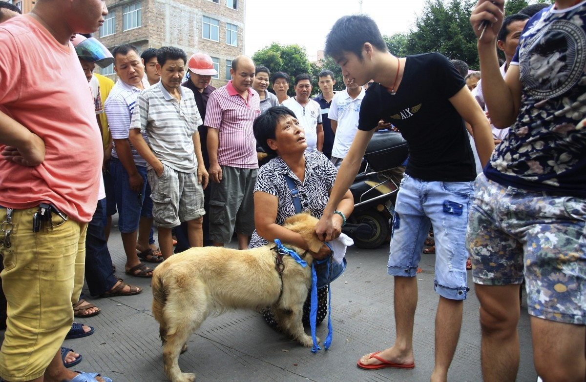 An animal activist (C) kneels down as she offers to buy a dog from a vendor (2nd R) to stop it from being eaten ahead of the annual dog meat festival in Yulin, Guangxi Zhuang Autonomous Region June 20, 2014. The festival, scheduled on June 21 as in previous years to mark the summer solstice, in southern Chinese city of Yulin, has drawn fierce protests from animal welfare groups and pet owners, who urge the local government to ban the long-standing tradition. According to animal welfare activists, about 10, 000 dogs will be consumed on that day, Xinhua News Agency reported.