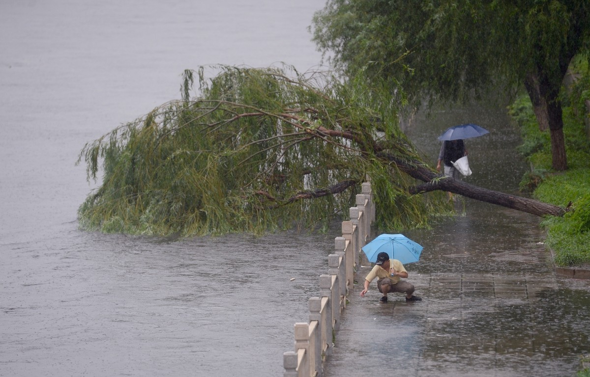 A man throws fish back to a flooded river in Beijing, China, July 20, 2016.