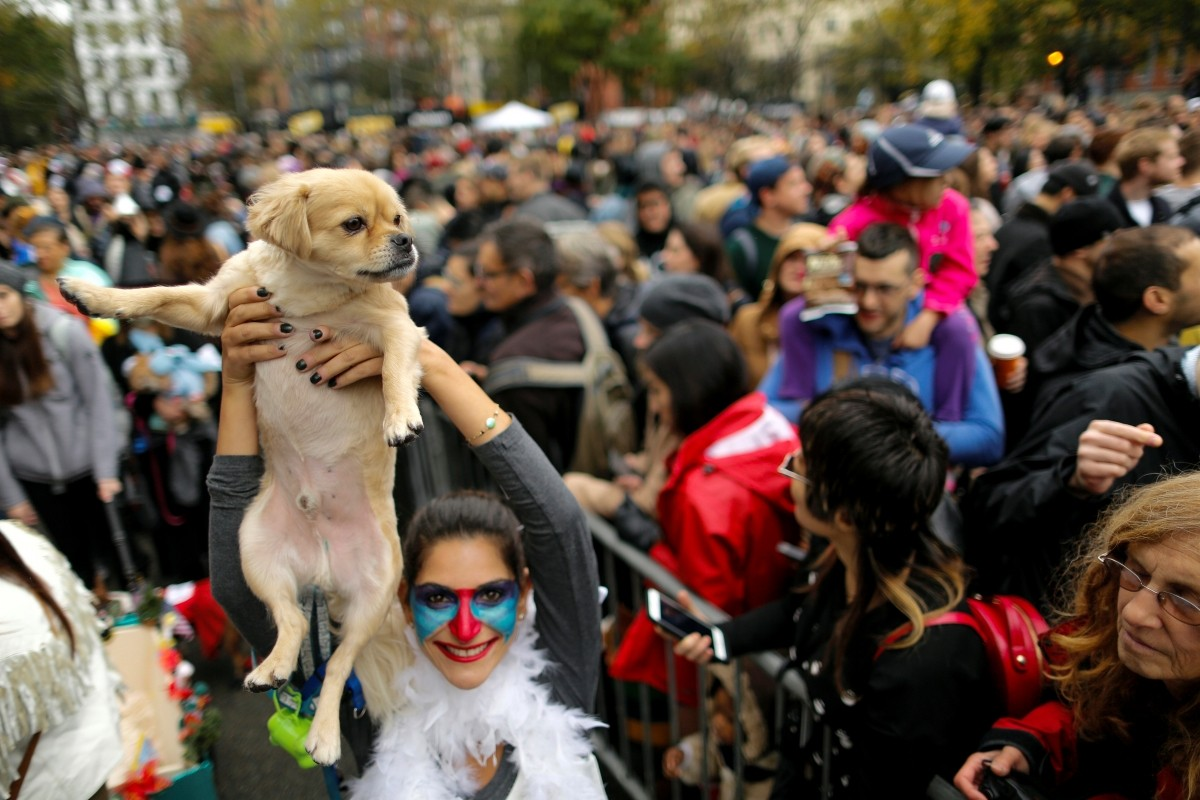 A reveller takes part in the annual halloween dog parade at Manhattan's Tompkins Square Park in New York, U.S. October 22, 2016.