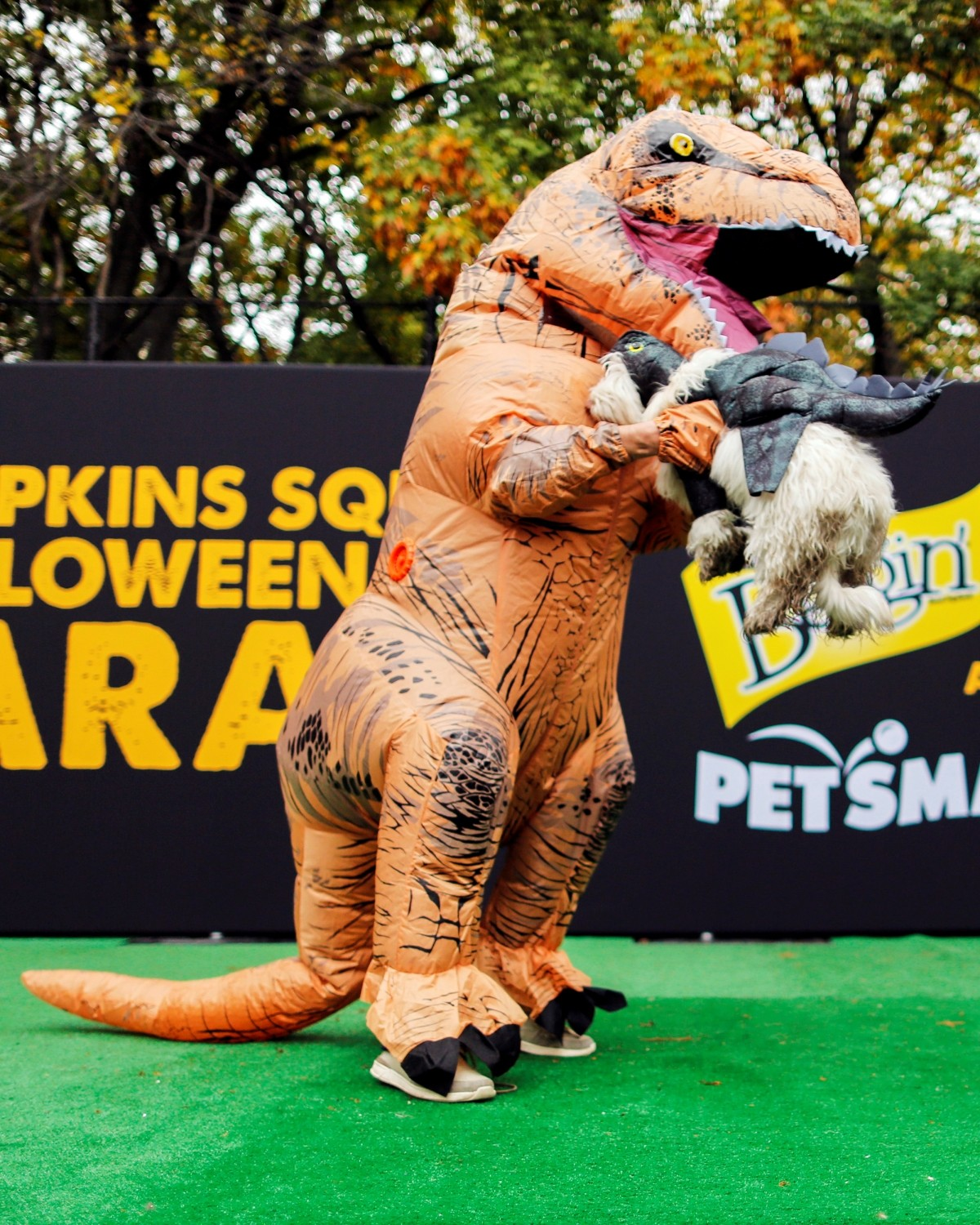 A reveller take part in the annual halloween dog parade at Manhattan's Tompkins Square Park in New York, U.S. October 22, 2016.