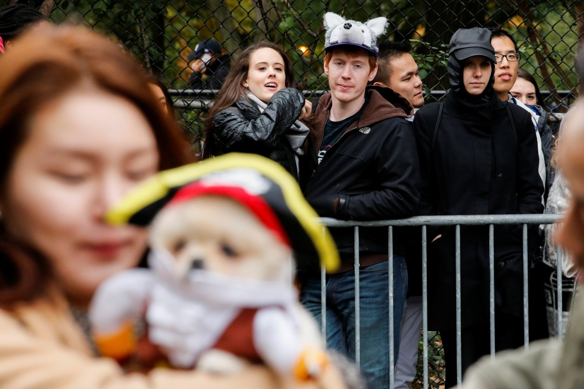 People look at the annual halloween dog parade at Manhattan's Tompkins Square Park in New York, U.S. October 22, 2016.
