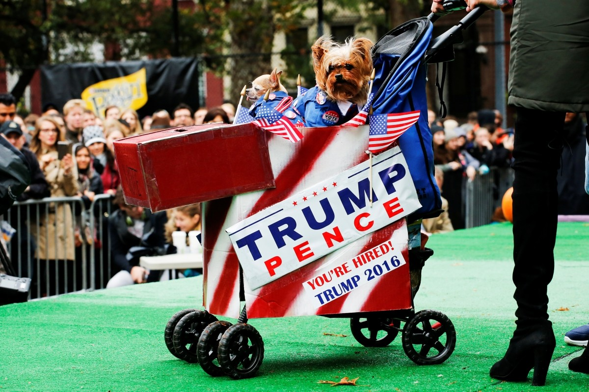 Dogs depicted as Democratic U.S. presidential nominee Hillary Clinton (L) and Republican U.S. presidential nominee Donald Trump take part in the annual halloween dog parade at Manhattan's Tompkins Square Park in New York, U.S. October 22, 2016.
