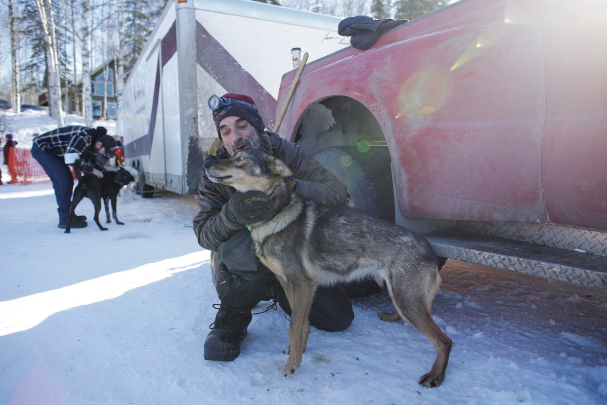 In Pictures: The legendary Iditarod Trail Sled Dog Race ...